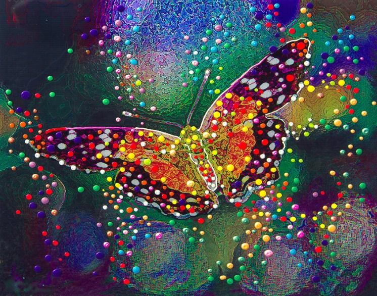butterfly_Julia-Watkins